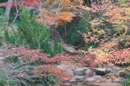 hiroshima2010-15