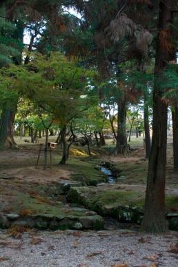 nara2010-12