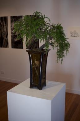 megalo-bonsaiprint-03