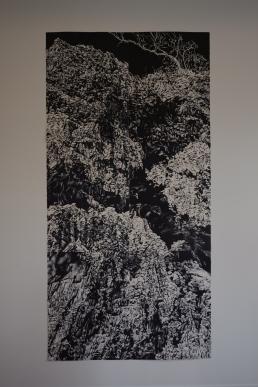 megalo-bonsaiprint-10