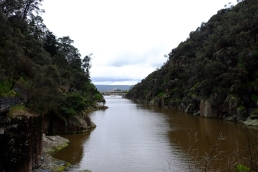 canarvon-gorge-kings-bridge