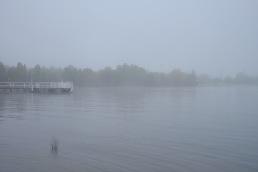lake-burley-griffin-fog