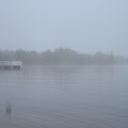 lake-burley-griffin-fog