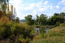 wetlands-reserve