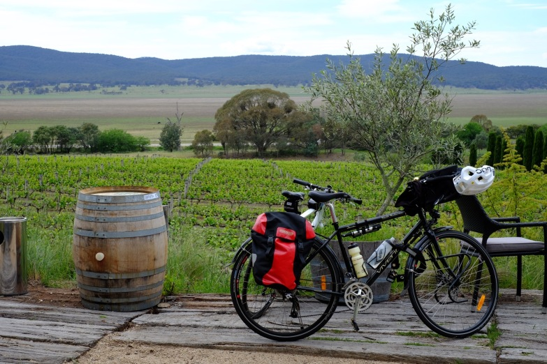 bike-vineyard