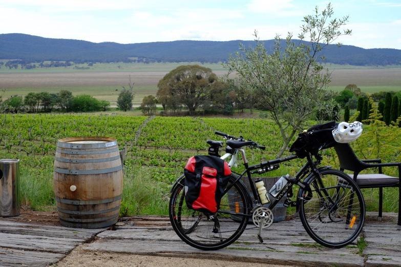 bike-vineyard
