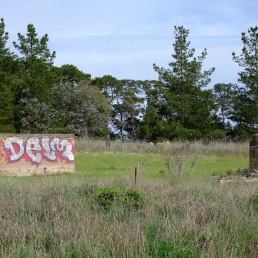 delm-ruins